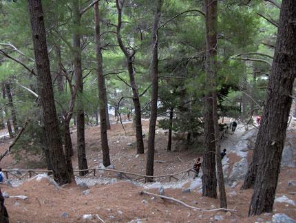 Διασχίζοντας το Φαράγγι της Σαμαριάς