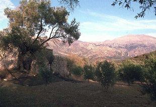 Die byzantinische Agia Anna-Kirche in Amari