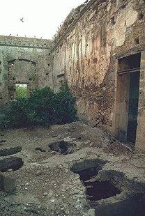 The Venetian villa Trevisan, Drapanias