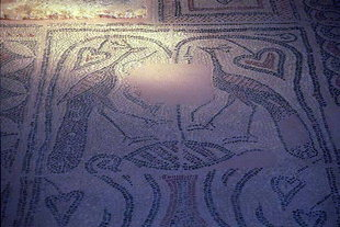 Mosaics from the 6C basilica in Sougia
