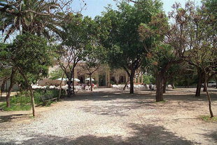 The Public Garden (Kipos) of Chania
