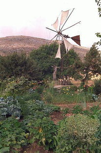 A windmill in Lassithi Plateau