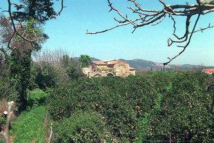Die byzantinische Kirche Ai Yannis Kyr-Yannis in den Orangenhainen von Kydonia