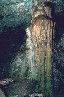 Σταλακτίτες και σταλαγμίτες στο Σπήλαιο Σεντόνι, Ζωνιανά