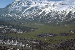 Nida Plateau in late winter