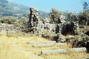 Le colonne provenienti dalla basilica a tre navate di Ellinikà, Vizari