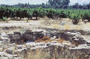 Die Ruinen der Basilika mit den vier Konchen in Gortyn