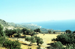 The coastline below the village of Drimiskos