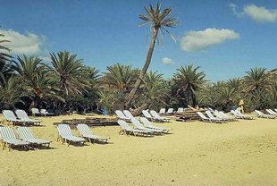 Η παραλία και το φοινικόδασος του Βάϊ