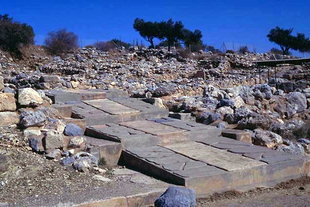 The ceremonial pathway, Zakros