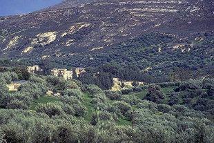 L'endroit archéologique de Knossos