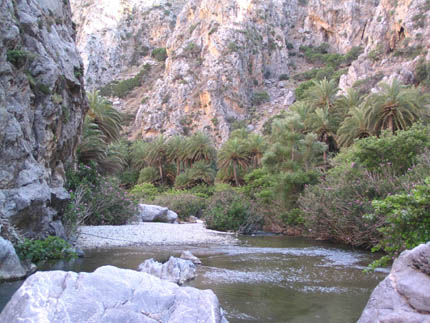 The river in Preveli beach