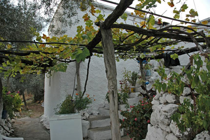 Old house in Agios Ioannis village in sfakia