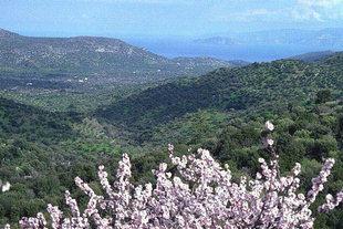 Der Mirabelo-Golf, von Kroustas, von Lassithi, aus gesehen