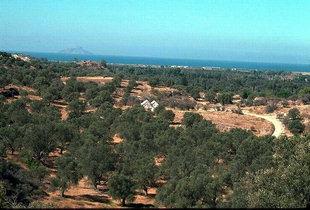 Die Agia Triada-Kirche in der Nähe der Stätte von Agia Triada