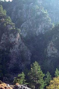 Die Agia Irini-Schlucht