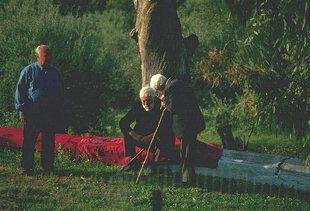 Pastori ad Asigonià