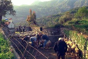 Il mattino presto al Panigiri ad Asigonià