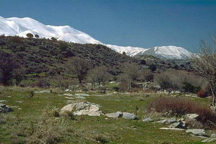 The Minoan site of Zominthos and Mount Psiloritis