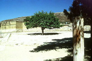 Der Westhof mit der Büste von Evans, Knossos