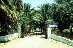 Der baumbestandene Eingang zum Kloster