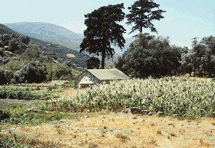 Η εκκλησία του Μιχαήλ Αρχάγγελου στους αγρούς, Βάθη
