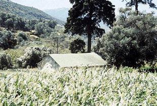 La chiesa di Michael Archangelos fra i campi ai piedi del paese di Vathì