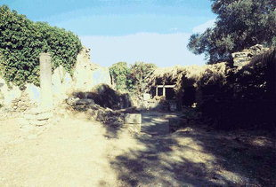The ruins of the church of the Panagia in Agia, Kydonia