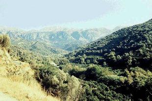 Το χωριό Μεσκλά στην Κυδωνία