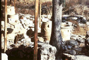 The pithari of the Minoan farm in Mitropolis