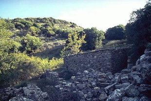 La zona di Driros ed il tempio ad Apollo Delphinos, Driros