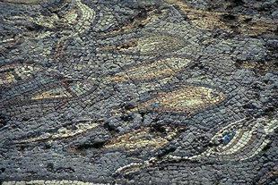 Mosaici con pesci nella fontana romana di Limin Hersonisou