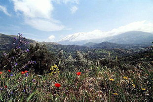 The Amari Valley and Mount Psiloritis