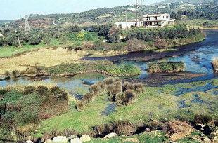 The marsh of the Georgioupolis Wildlife Refuge