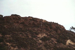 Die minoische Stätte Fournou Korfi bei Mirtos